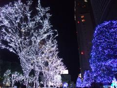 新宿はクリスマスムード一色