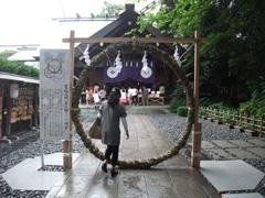 東京大神宮の茅の輪くぐり