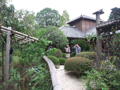 圓融寺の庭園散策