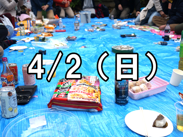 寺社コンお花見会