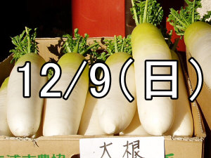 了徳寺大根焚コン(京都)